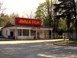 Izuzeti filmski fond od prodaje Avala filma