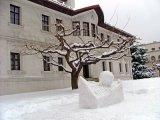 Skulpture od snega